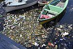 Água do mar poluída.