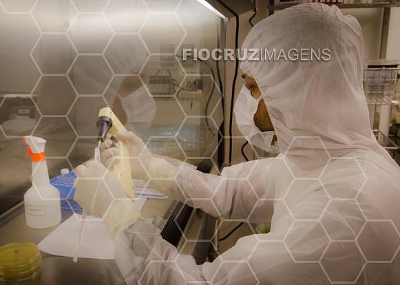 Preparação da suspensão bacteriana em placas de Petri