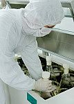 Propagação de células em câmara de agitação orbital climatizada (shaker)