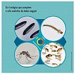Ciclo evolutivo de Aedes aegypti