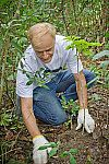 Recuperação ambiental