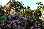 Jardim urbano