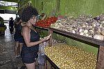 Escolha de alimento