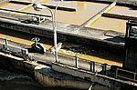 Estação de tratamento de água de Guandu