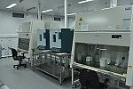 Unidade de apoio a testagem da Covid-19.