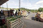 Distribuidor de alimentos