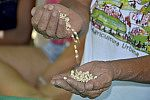 Mãos mostrando feijões.