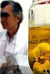 Laboratório de zoonoses
